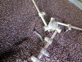La Visite Guidée : Un Grand cru de café